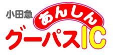 小田急あんしんグーパスIC